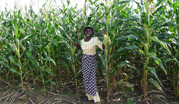 Strengthening the Advocacy Movement for Equitable Smallholder Agriculture in Africa