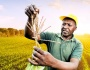 Steering local response and solutions to safeguard African farming communities and food sovereignty